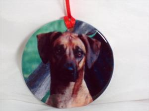 Pet mementos, Porcelain ornament, inscription on back, custom design